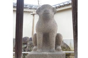 達磨寺写真
